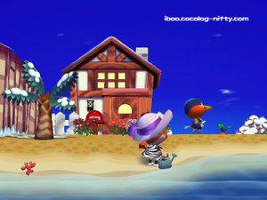081215_my_house